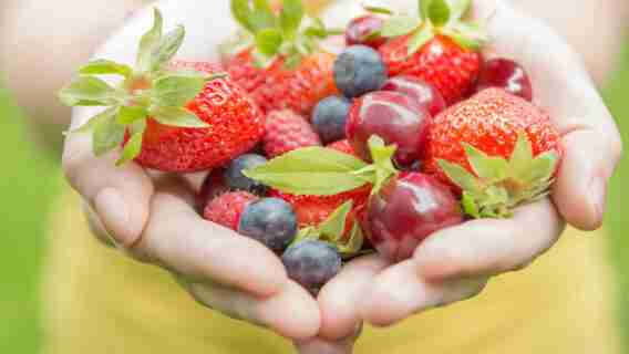 Benefits Of Eating Healthy Food In Your Area