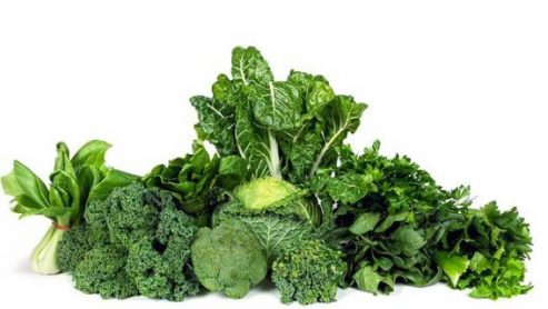 Does Salad Make You Poop Green?
