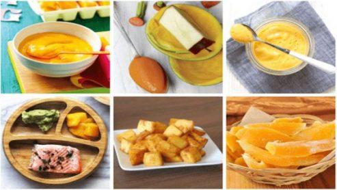 delicious Mango Baby Food Recipes